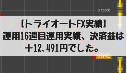 【トライオートFX実績】運用16週目運用実績、決済益+12,491円でした。2018/10/29週